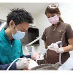 青山 歯科