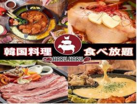 肉×チーズ×韓国料理 個室ダイニング Haru Haru 名鉄岐阜駅前