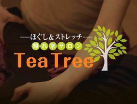 ほぐし&ストレッチ 隠れ家サロン Tea Tree